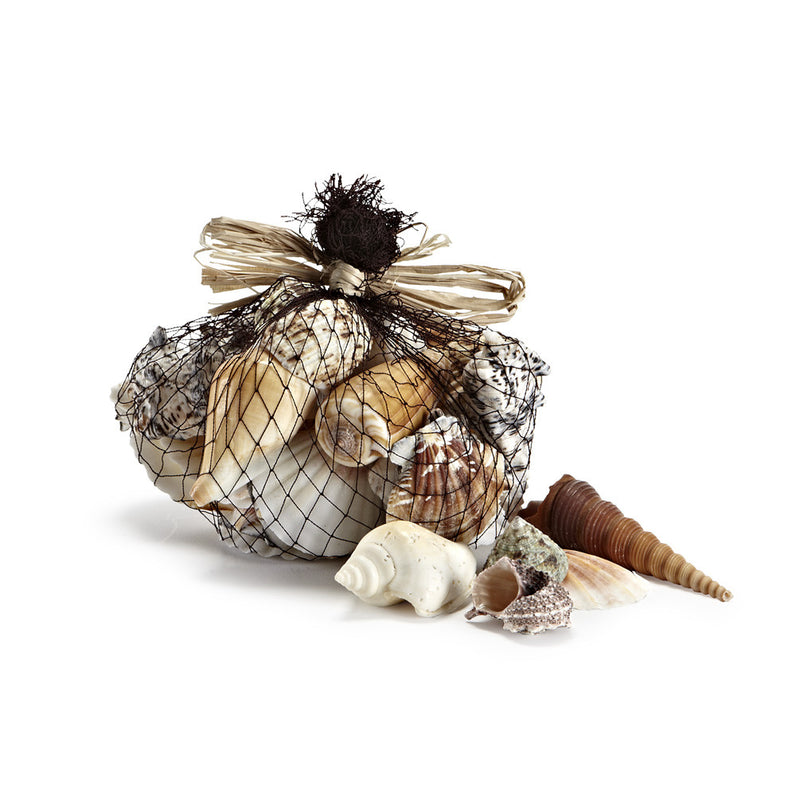 Bag of Mixed Sea Shells, AC-Abbott Collection, Putti Fine Furnishings