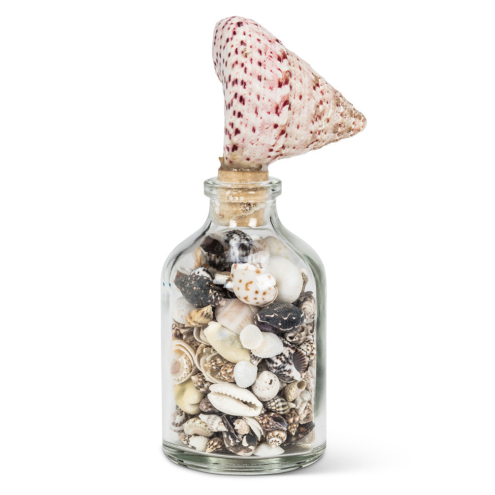 Small Bottle With Shell Stopper - Putti Fine Furnishings Canada