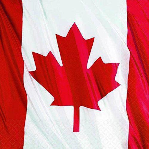 Waiving Canadian Flag Napkins - Lunch