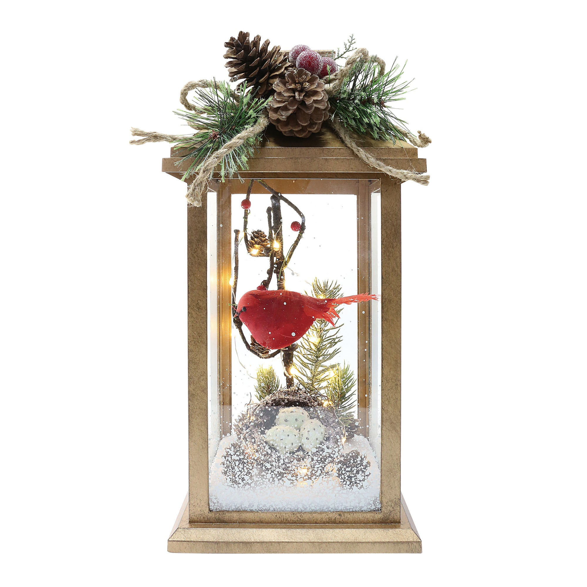 LED Lantern with Cardinal | Putti Christmas Decorations