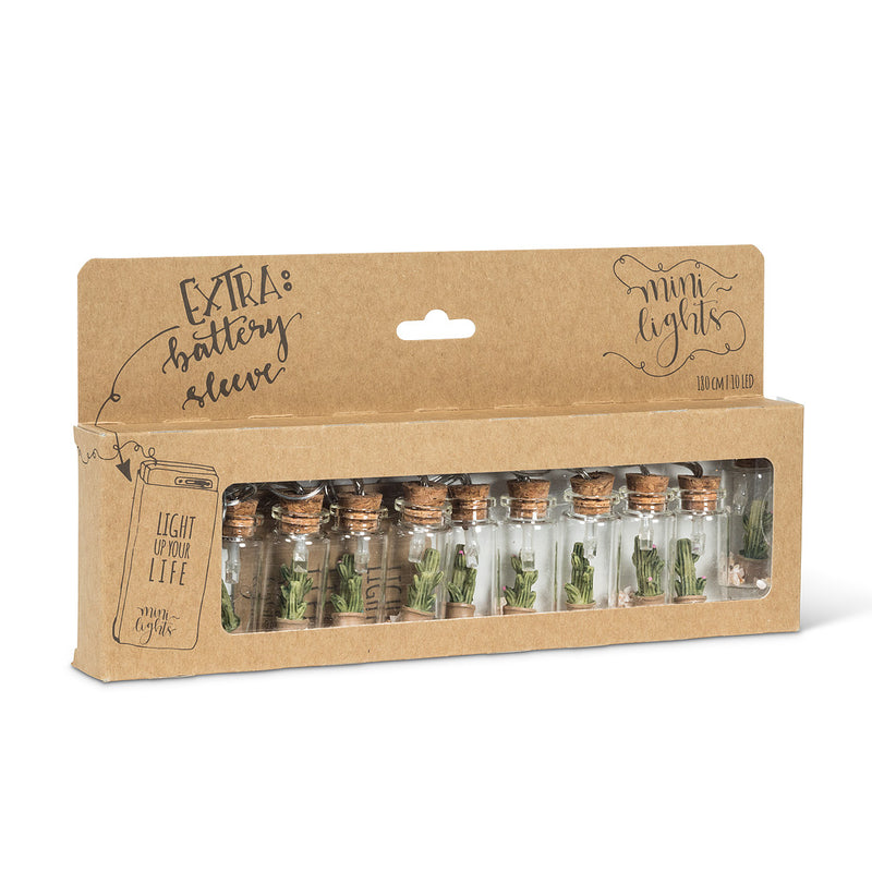Cactus in Bottle Minilights | Putti Celebrations