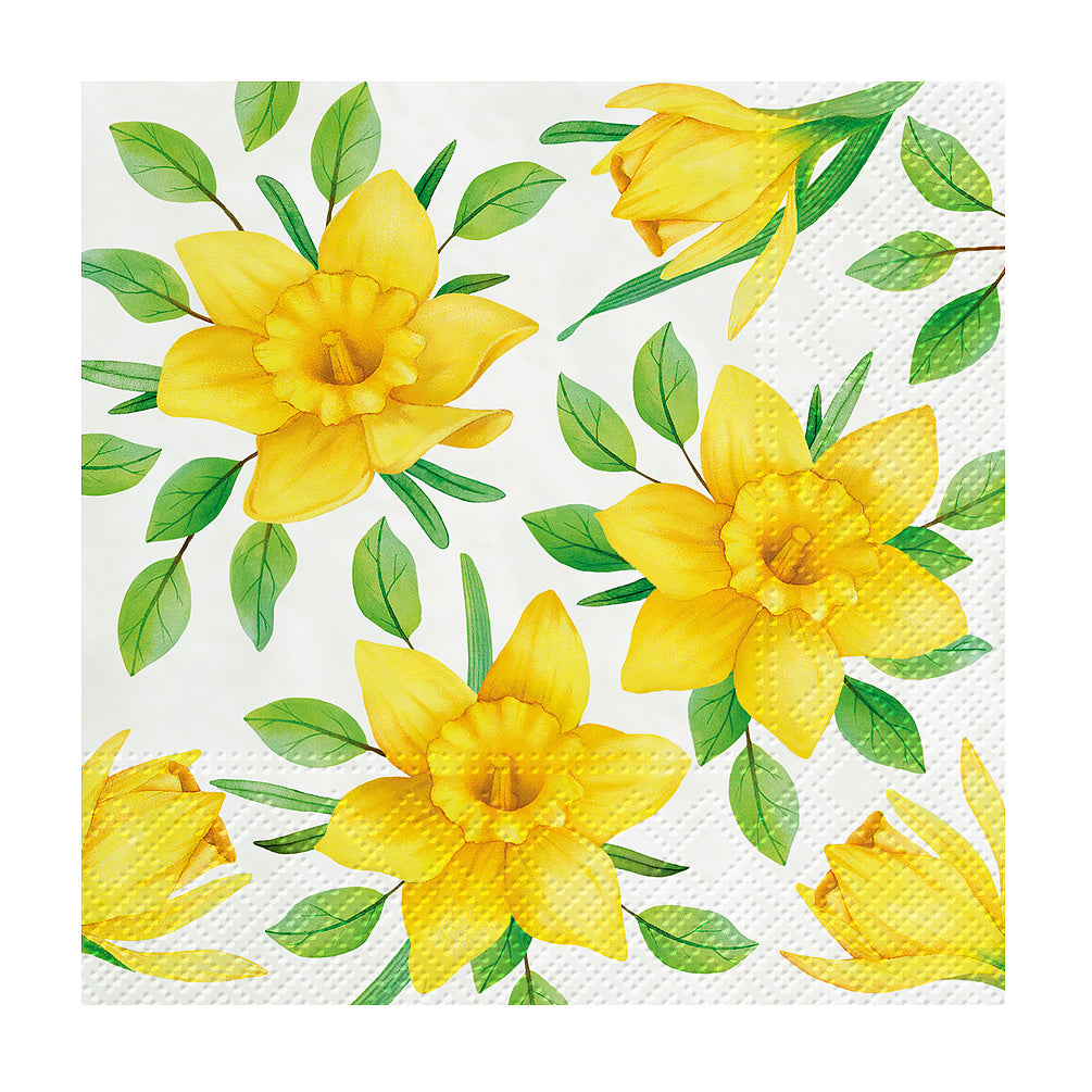 Daffodils in Bloom Paper Cocktail Napkins | Putti Celebrations and Partyware