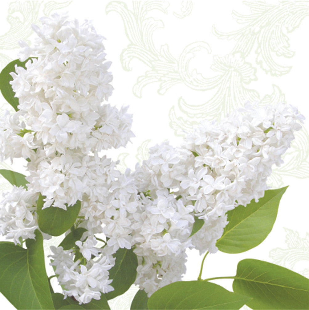 White Lilac Napkins, AC-Abbott Collection, Putti Fine Furnishings