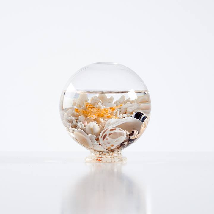 Aquatic Life Glass Decor Ball - Small