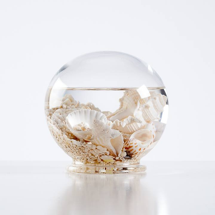 Aquatic Life Glass Decor Ball - Medium