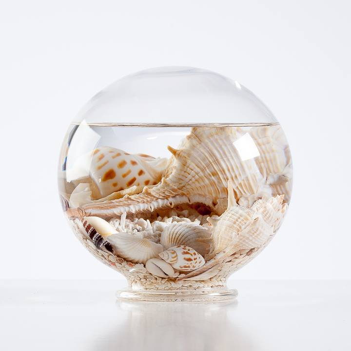 Aquatic Life Glass Decor Ball - Large