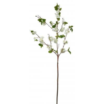 Cherry Blossom Branch - Large White, WC-Windward Canada, Putti Fine Furnishings