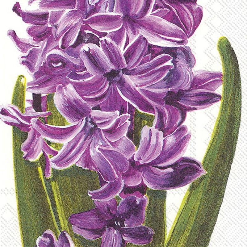 Lilac Hyacinth Cocktail Paper Napkin | Putti Party Supplies