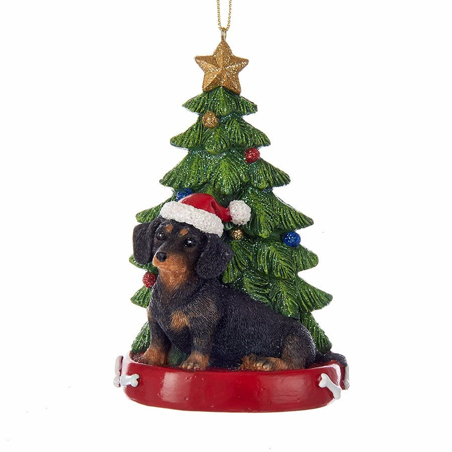 Kurt Adler Dachshund with Tree Ornament  | Putti Christmas Decorations