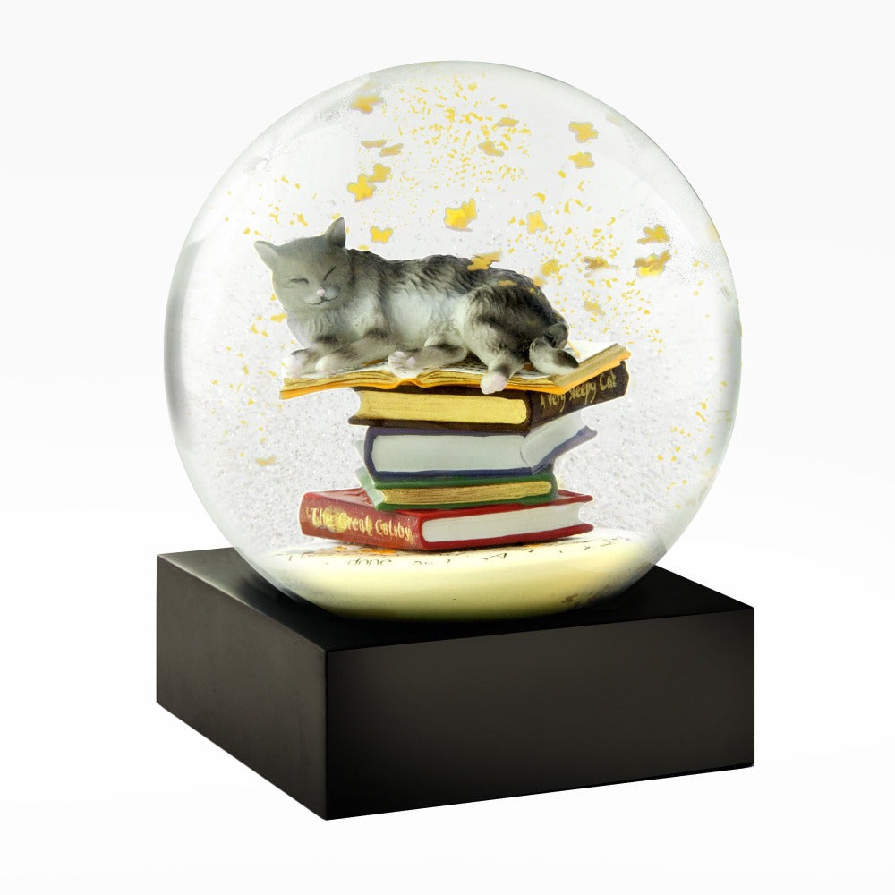CoolSnowGlobes - Cat on Books Snow Globe