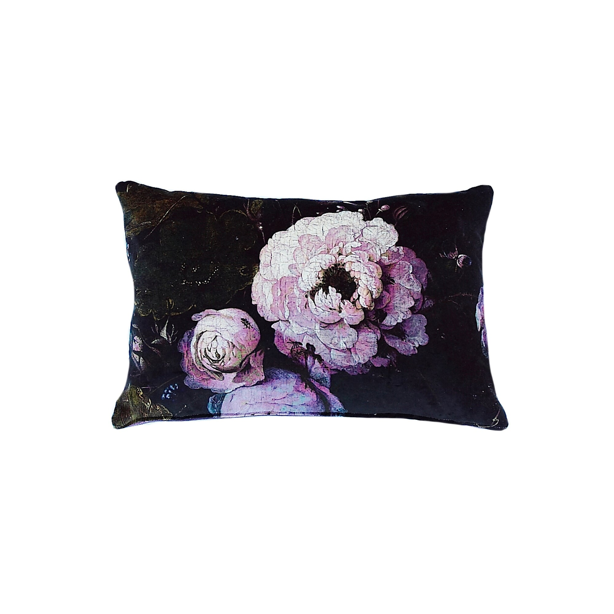 Floralisim Peonies Velvet Cushion 50cm x 30cm, B&C-Boho & Co, Putti Fine Furnishings
