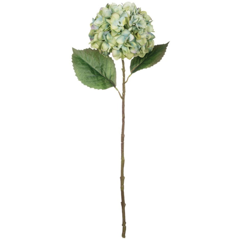 Sullivan's Blue Green Hydrangea Stem | Putti Fine Furnishings