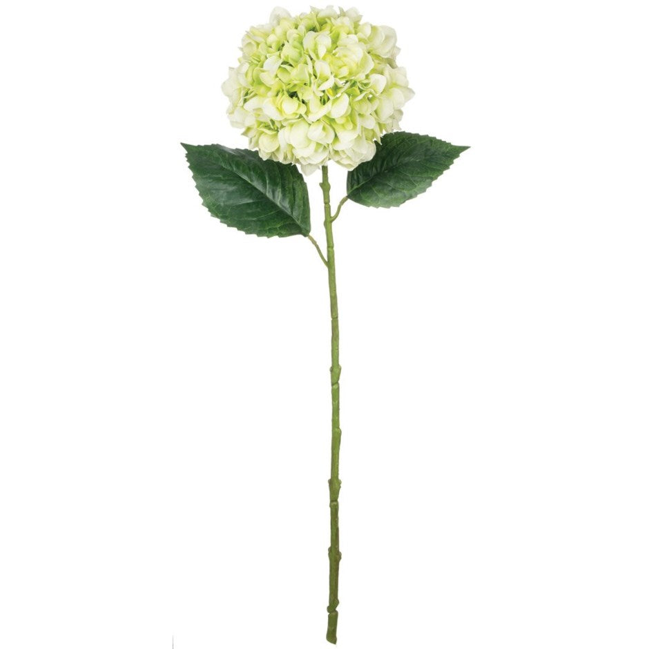 Sullivan's Light Green Hydrangea Stem | Putti Fine Furnishings
