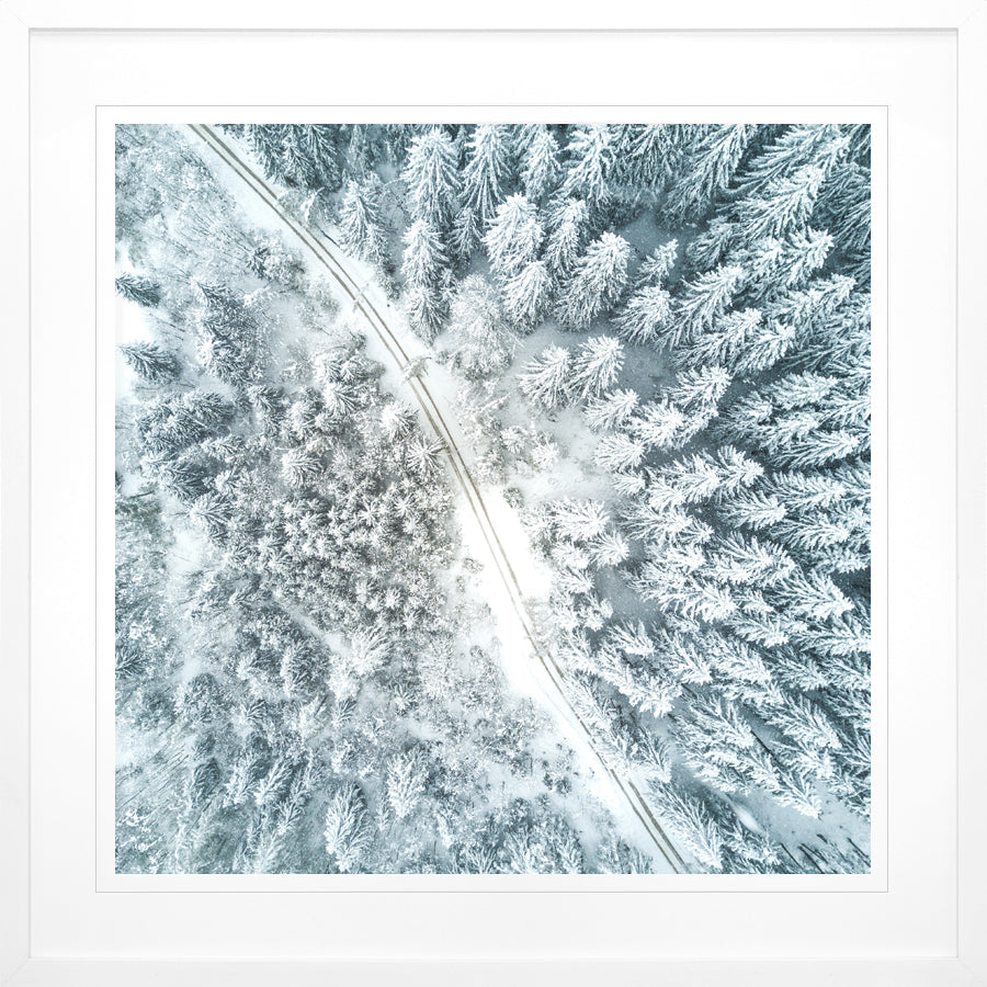 """Winter Above"" Framed Print"