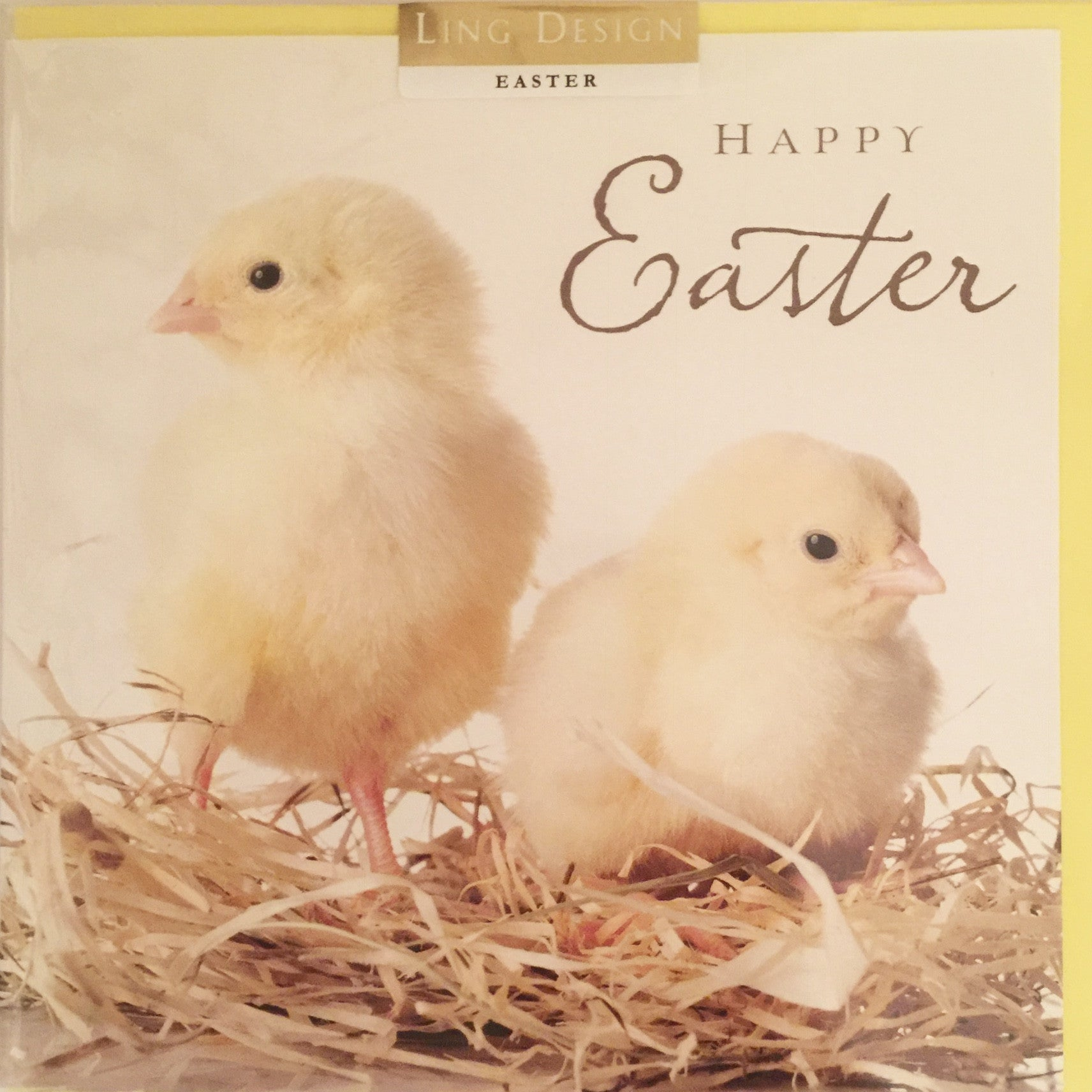Little Young Chicks on Nest Easter Greeting Card, PEC-Paper E Clips, Putti Fine Furnishings