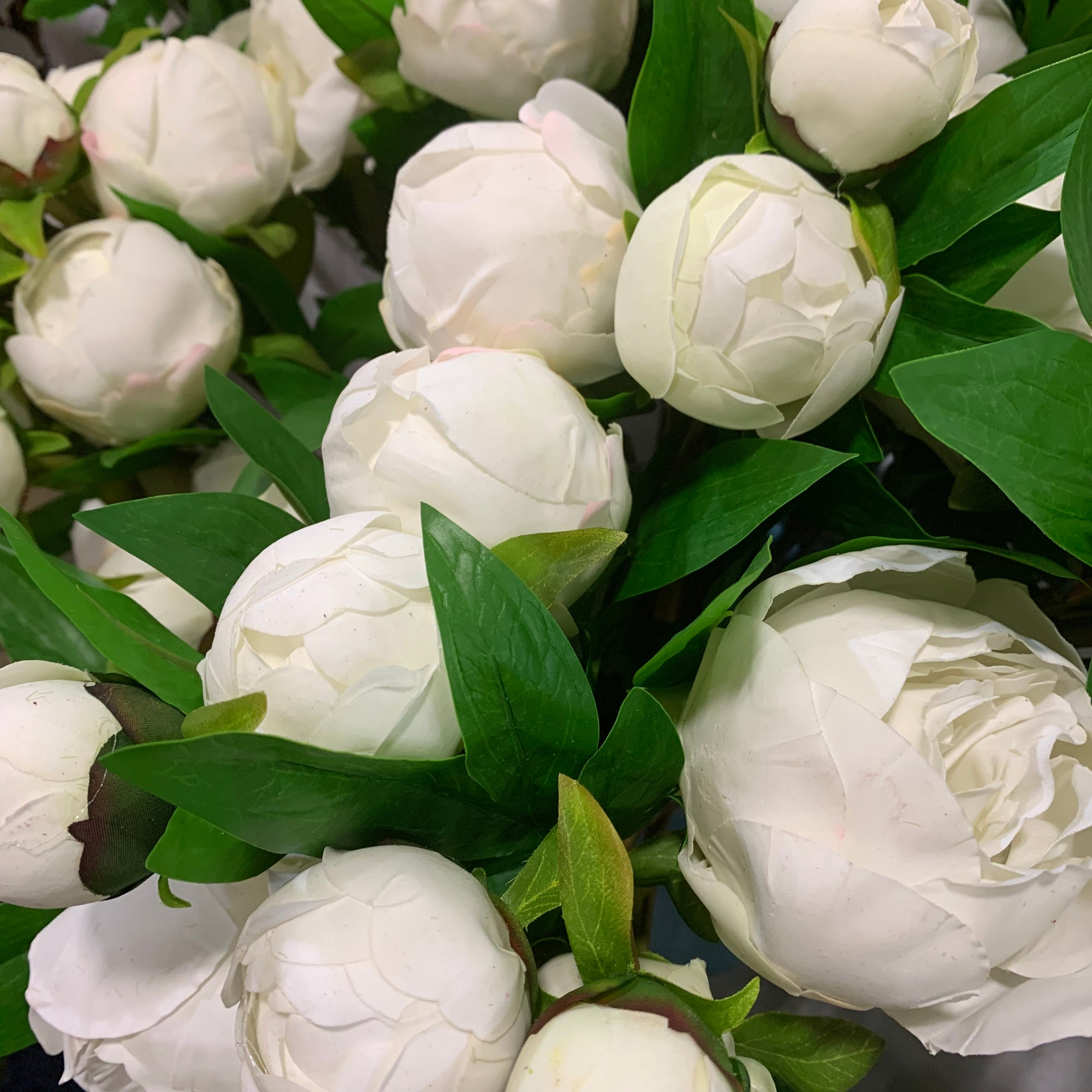 White Fresh Touch Peony Spray
