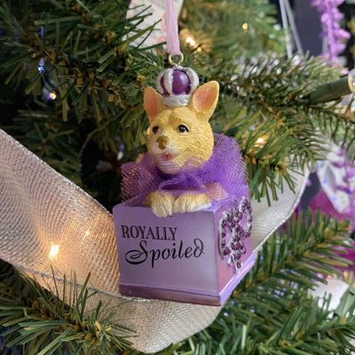 Kurt Adler Royal Splendor Dog in Box Ornament | Putti Decorations
