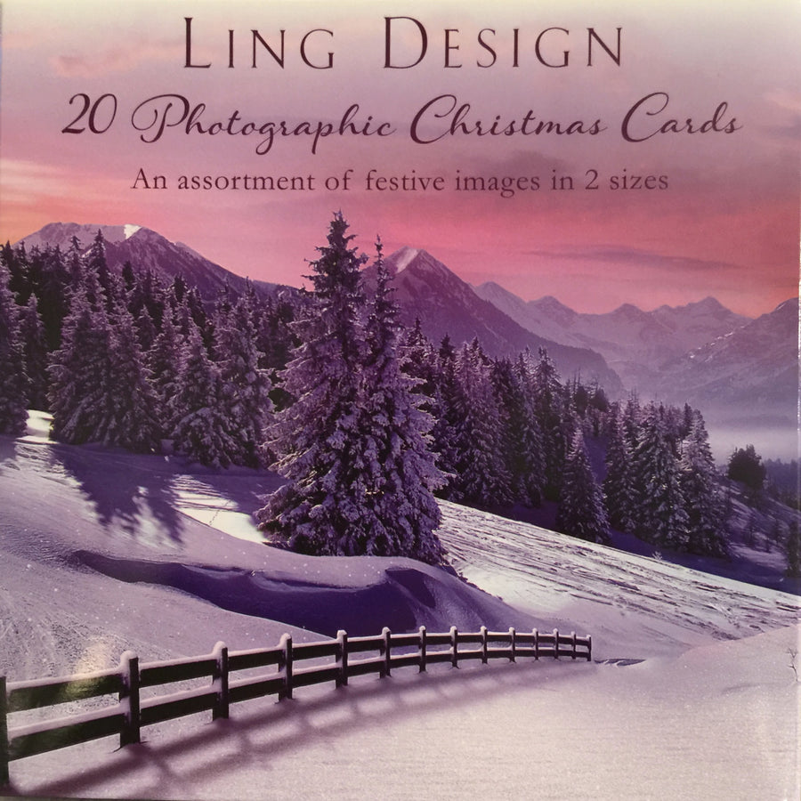 Photographic Assortment Box Christmas Cards, Paper E Clips, Putti Fine Furnishings