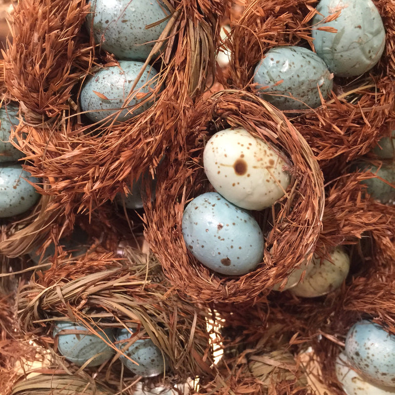 Blue Robin's Eggs in Nest Pick, AC-Abbott Collection, Putti Fine Furnishings