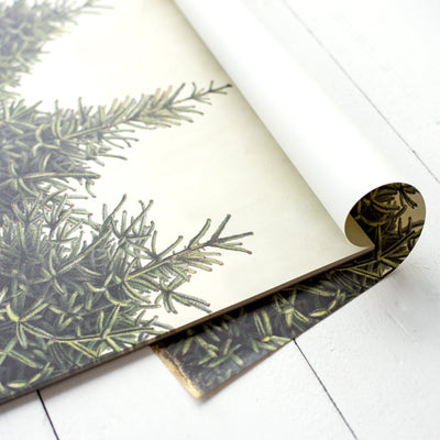 Hester & Cook Fir Tree Paper Placemats