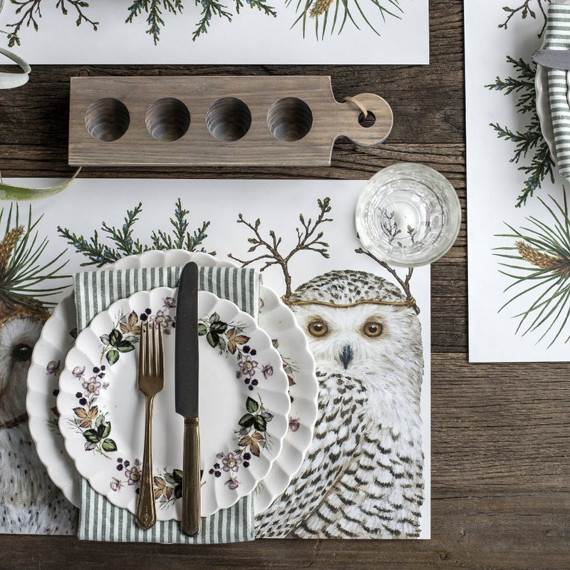 "Hester & Cook ""Winter Owls"" Paper Placemats"