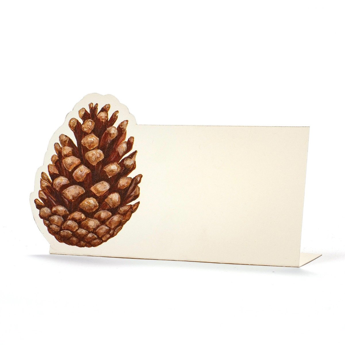 Hester & Cook Christmas Pinecone Placecards | Putti Celebrations & Partyware