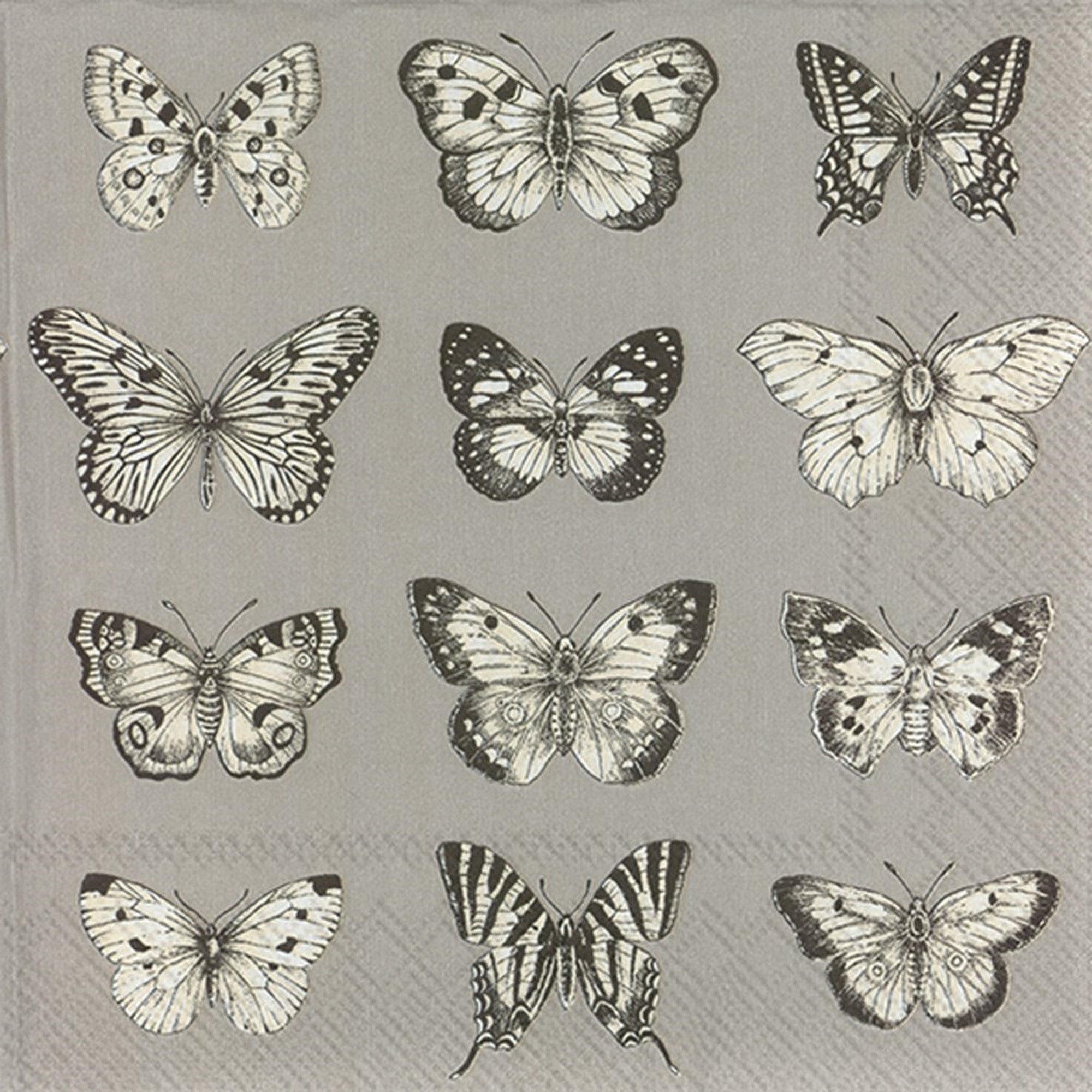 IHR Butterflies Paper Lunch Napkin Grey | Putti Party Supplies