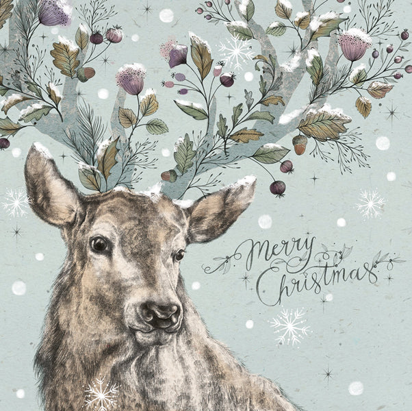 """Stag"" Boxed Greeting Card 