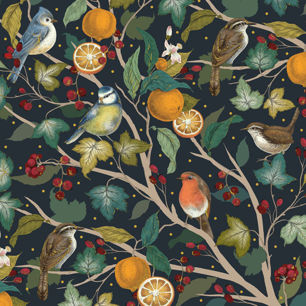 The Art File Winter Birds in a Fruit Tree Boxed Greeting Card - Putti