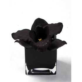 Herve Gambs Orchid in Black Glass