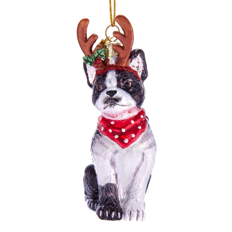 Kurt Adler Boston Terrier with Antlers Glass Ornament