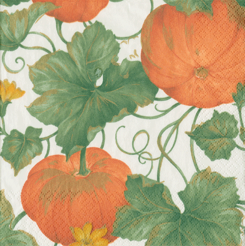 Orange Heirloom Pumpkins Paper Napkin - Lunch