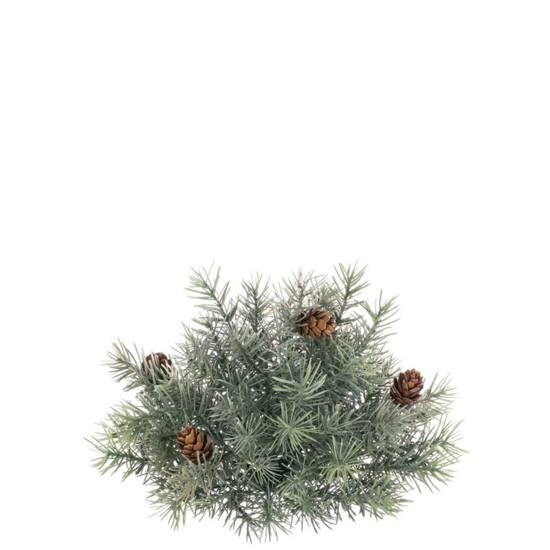 Sullivan's Angel Pine with Cones Half Orb | Putti Christmas Decoration