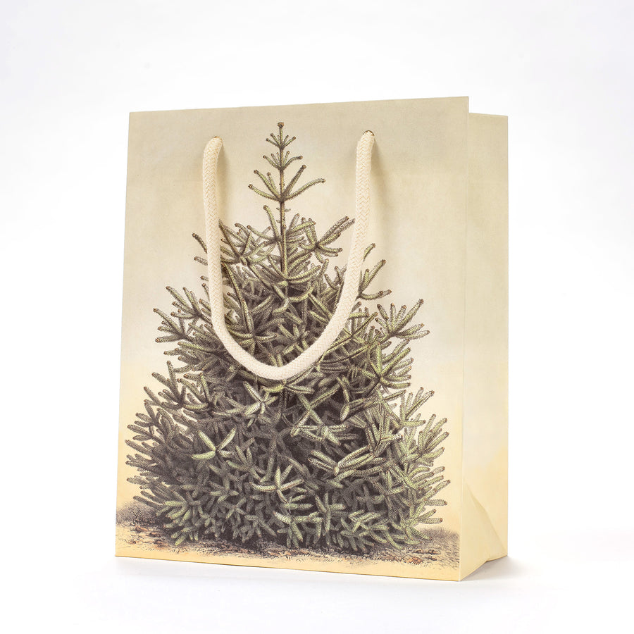 Hester & Cook Fir Tree Gift Bag