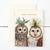 Hester & Cook Winter Owls Boxed Set Cards - Putti celebrations