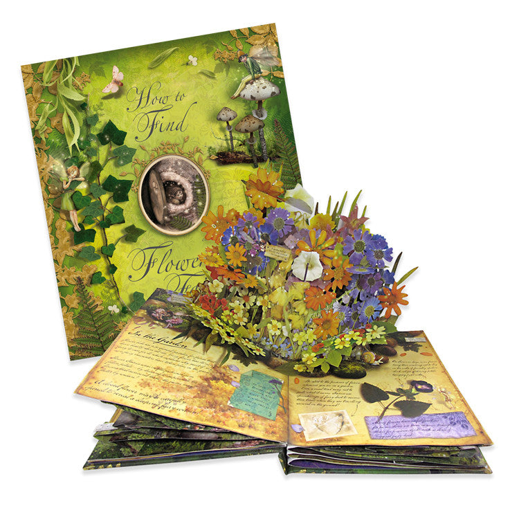 """How to Find Flower Fairies"" Pop up Book"