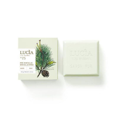 Lucia Les Saison Pine Scented Shea Butter Soap - Putti Fine Furnishings