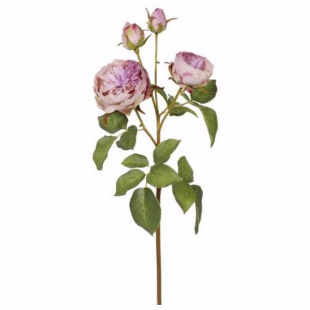 English Rose - Lavender, WC-Windward Canada, Putti Fine Furnishings