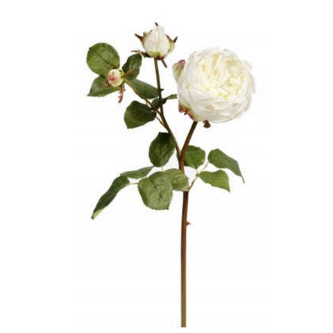 English Rose Small - White-Artificial Flowers-Windward Canada-Putti Fine Furnishings