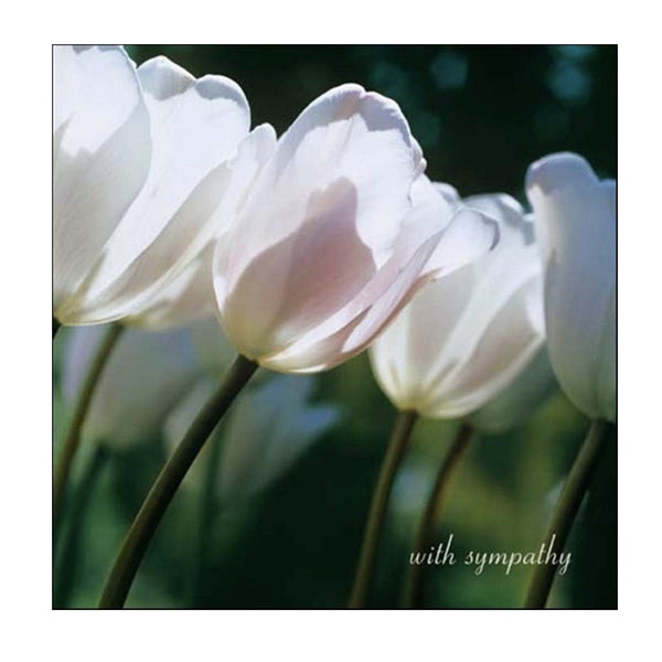 Tulips Sympathy Greeting Card-stationary-JE-Jannex Enterprises-Putti Fine Furnishings
