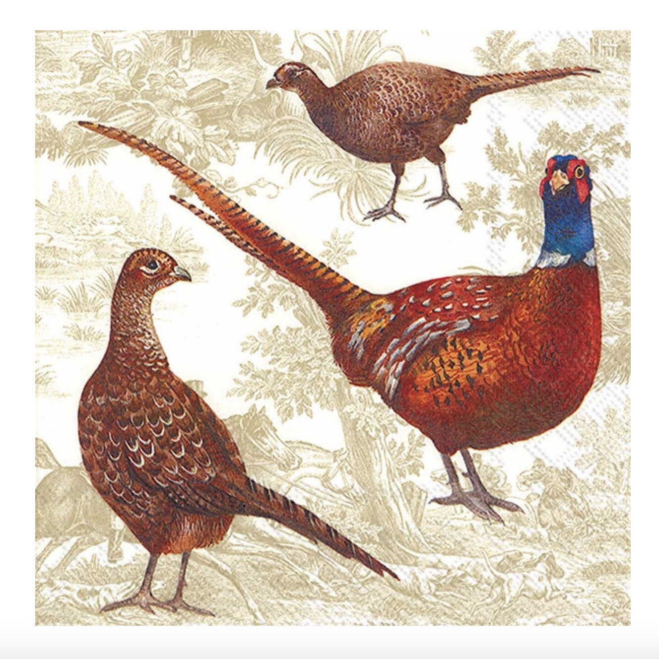 Pheasant Scene - Lunch Paper Napkin, Carsim Trading, Putti Fine Furnishings