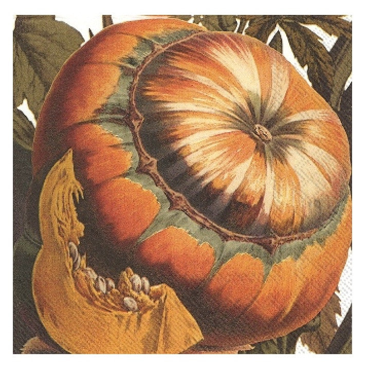 Autumn Squash - Lunch Paper Napkin
