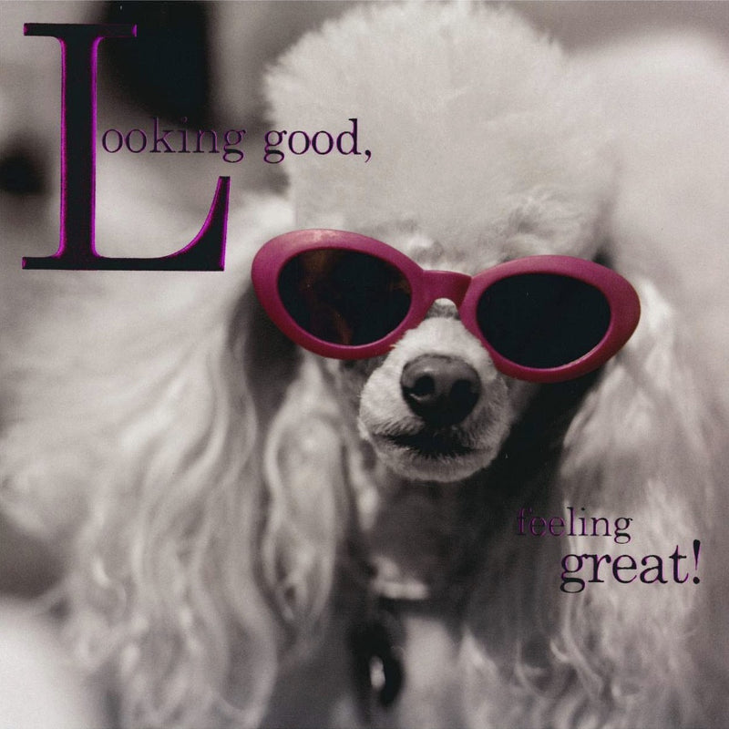 """Looking Good... Feeling Great"" Poodle Card, JE-Jannex Enterprises, Putti Fine Furnishings"
