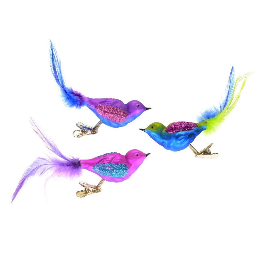 Multicolor Glass Bird with Clip, CT-Christmas Tradition, Putti Fine Furnishings