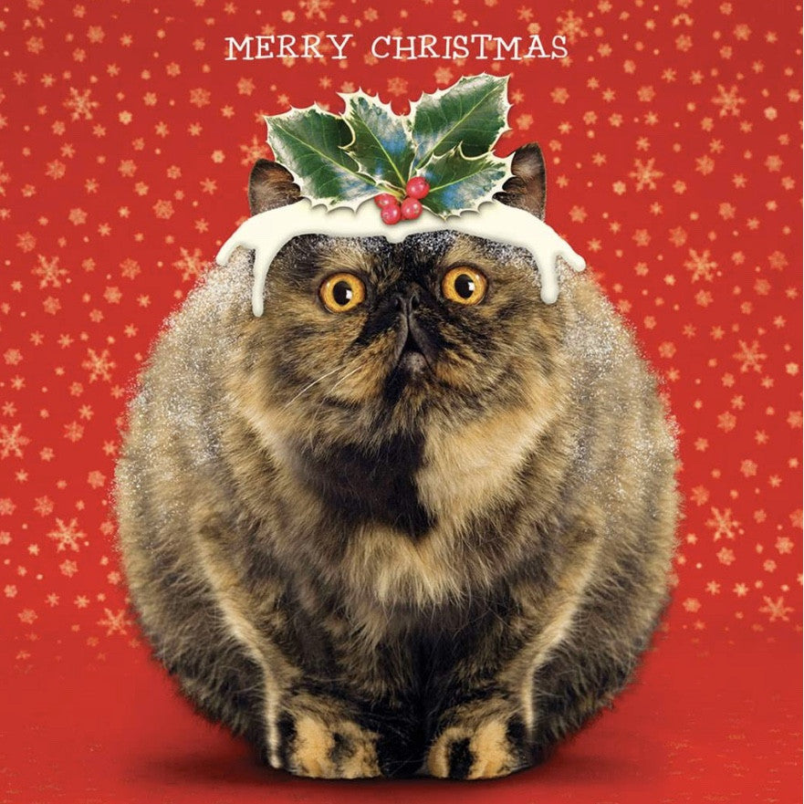 """Christmas Pudding Cat"" Christmas Card - Boxed-Christmas-JE-Jannex Enterprises-Putti Fine Furnishings"