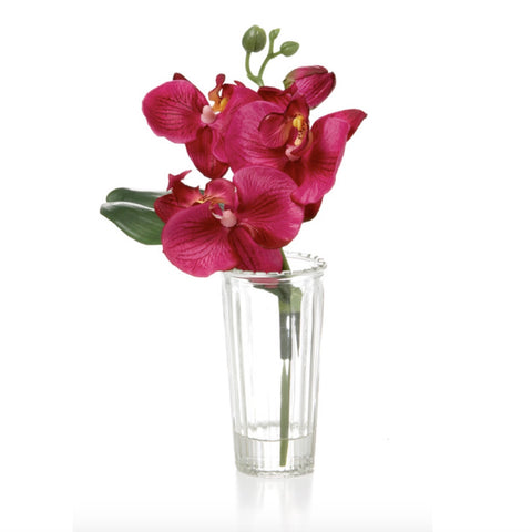 Silk Orchid in Glass Vase - Magenta -  Artificial Flowers - V&L-V & L Associates Inc. - Putti Fine Furnishings Toronto Canada