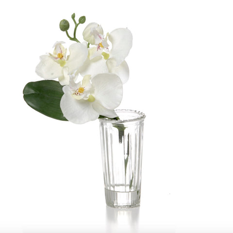 Silk Orchid in Glass Vase - White -  Artificial Flowers - V&L-V & L Associates Inc. - Putti Fine Furnishings Toronto Canada
