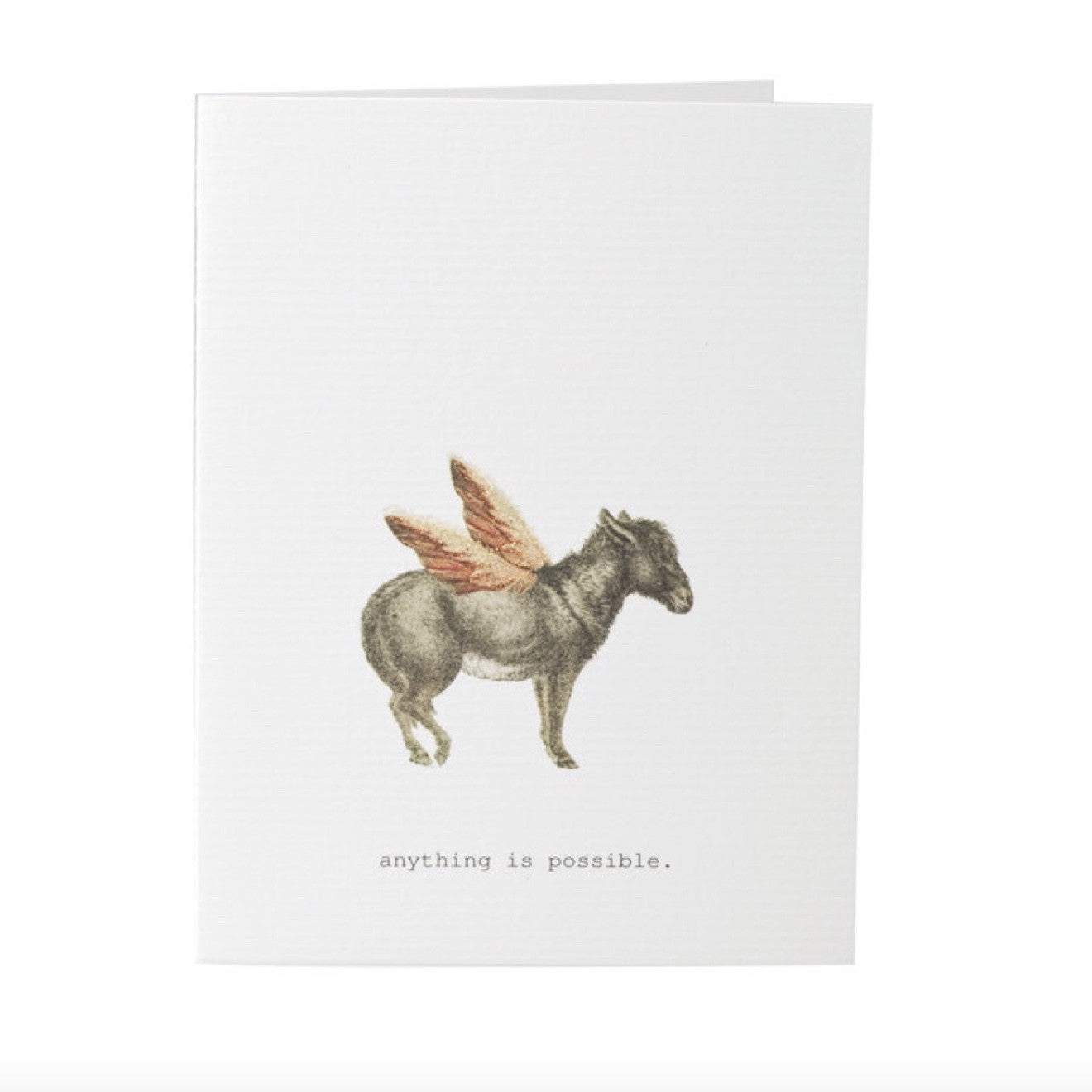 "Tokyo Milk ""Anything is possible"" Donkey with Wings Card, TM-Tokyo Milk, Putti Fine Furnishings"
