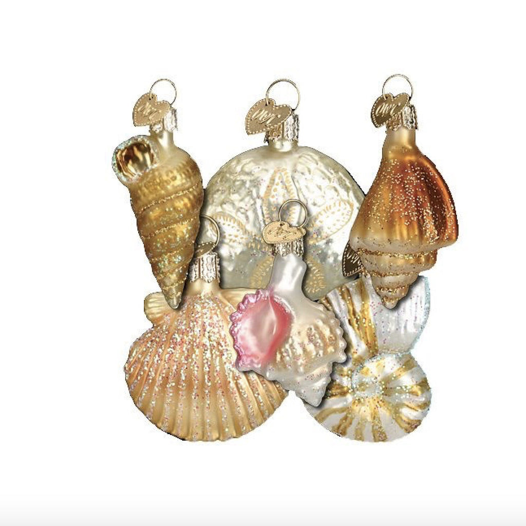 Old World Christmas Assorted Sea Shell Set of Ornaments-Christmas-OWC-Old World Christmas-Putti Fine Furnishings