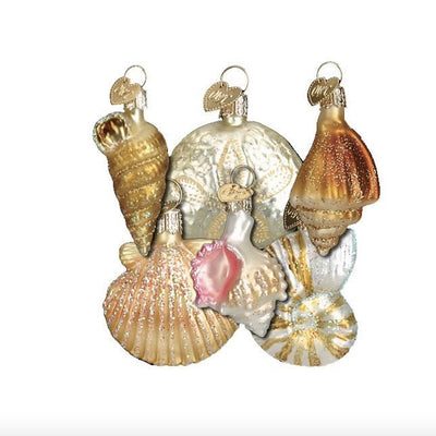 Old World Christmas Assorted Sea Shell Set of Ornaments, OWC-Old World Christmas, Putti Fine Furnishings